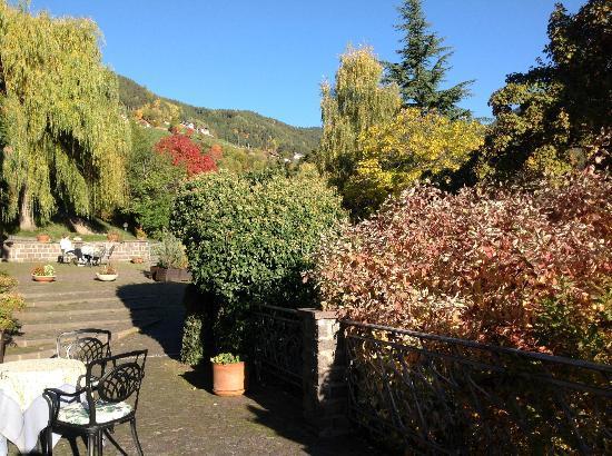 Naturhotel Wieserhof: Außenbereich Hotel
