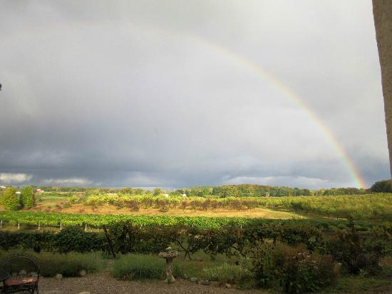 Grey Hare Inn: Rainbow view from front patio