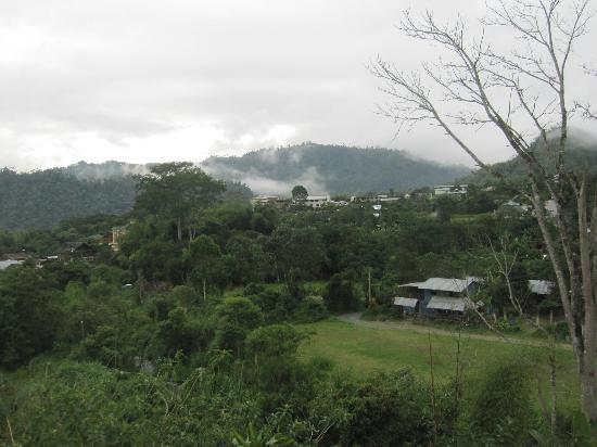 Dragonfly Inn B&B: Cloud forest view in Mindo