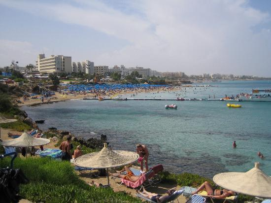 Pictures Fig Tree Bay