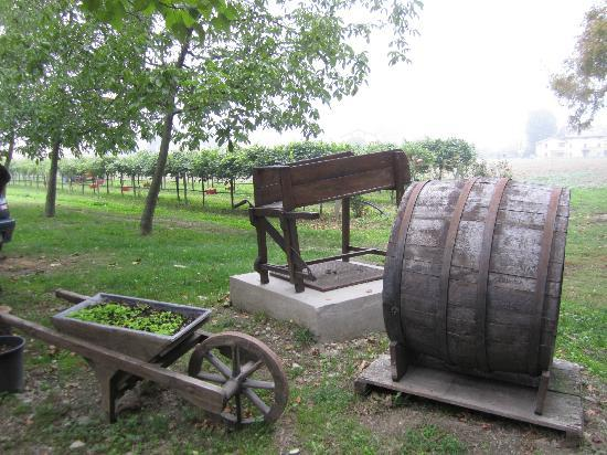Italian Days Food Experience: Balsamico Farm