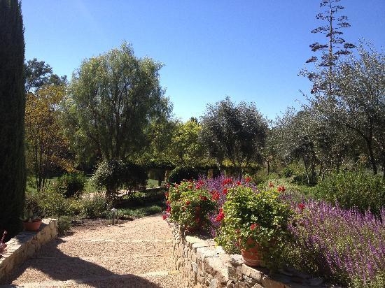 Ojai Valley Inn & Spa: Herb Garden