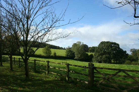 Larkbeare Grange: View from the porch