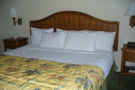 Inn of Naples: Comfortable bedding with plenty of pillows.