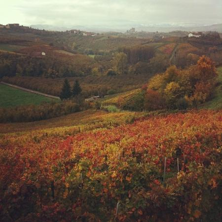 Alla Cascina Baresane : landscape
