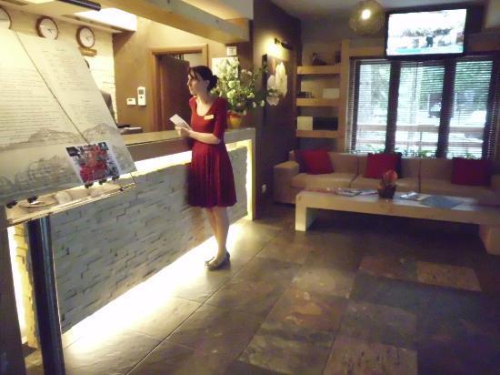Ioana Hotel: Reception