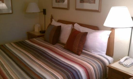 Santa Fe Sage Inn: Clean blanket & pillows, bed somewhat firm
