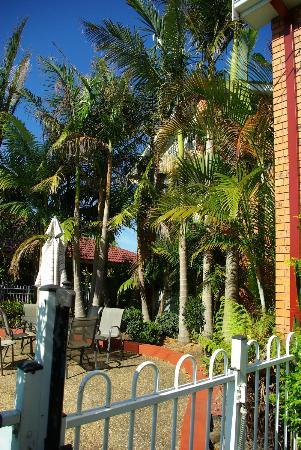Avaleen Lodge Motor Inn: Attractive pool area