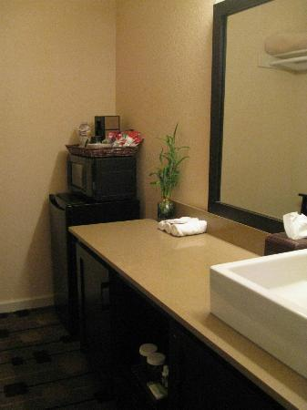 The Zen Hotel: Sink area and fridge