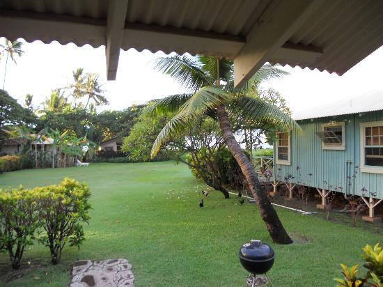 Waimea Plantation Cottages: View from Lanai
