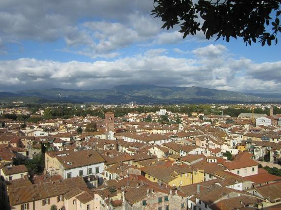 Il Seminario Bed & Breakfast: View from Guignini Tower