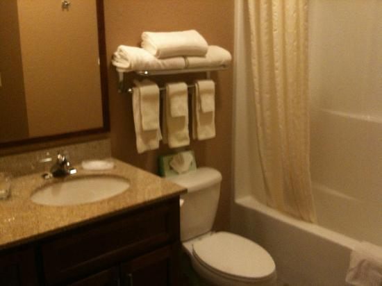 Candlewood Suites - Portland Airport: SdB