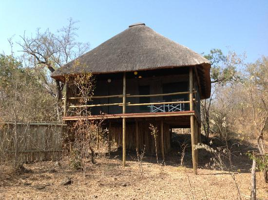 Muweti Bush Lodge: Tent from the outside