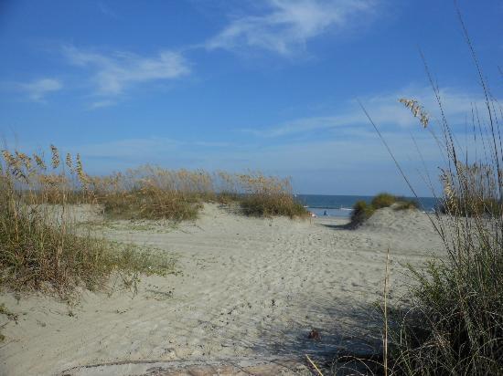 Hilton Head Island Beach & Tennis Resort : beach