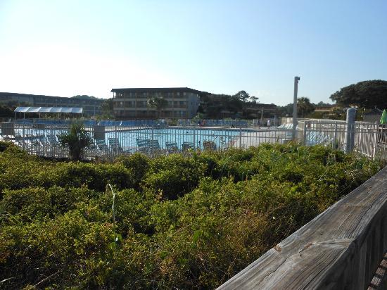 Hilton Head Island Beach & Tennis Resort : pool
