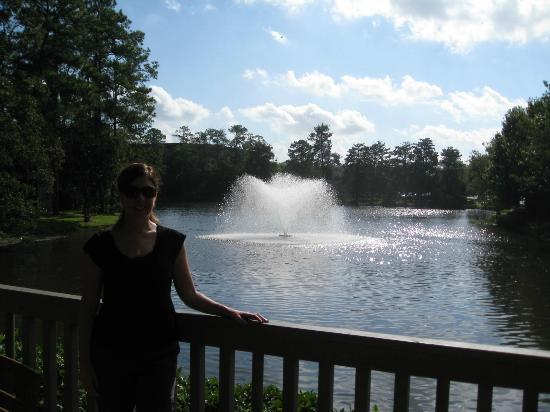 The Woodlands Resort: One of many water features