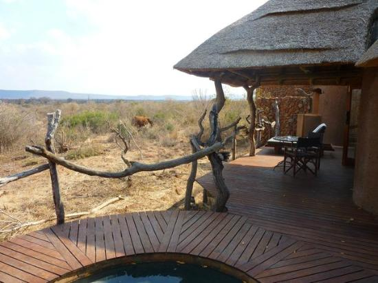 Madikwe Safari Lodge: Terrazzo della camera 2