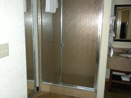 Courtyard San Diego Del Mar/Solana Beach: Large Shower