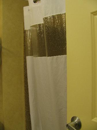 La Quinta Inn & Suites Paso Robles: see though shower curtain - like that hotels are doing this