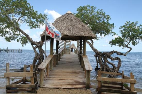 Tranquilseas Eco Lodge and Dive Center: The Tranquilseas dock