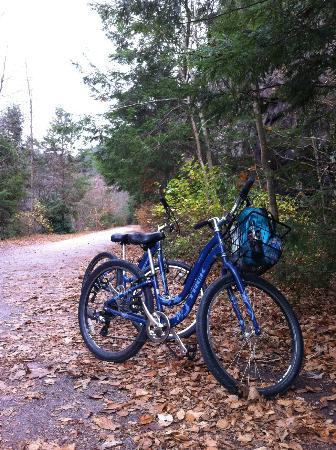 Pensylwania: The bike trail
