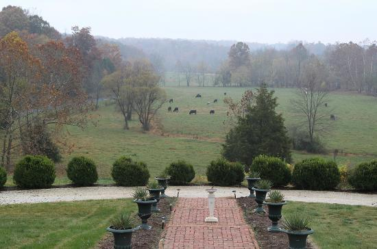 Spring Grove Farm Bed and Breakfast: Morning view from the main entrance.