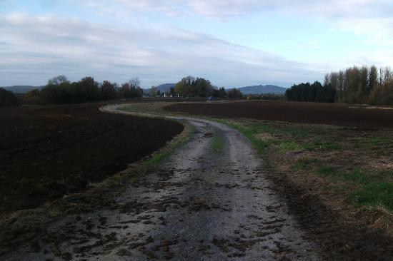 Inch House : Farm