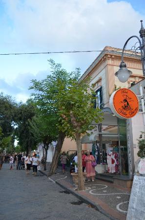 Hotel Villa Diana Foto Di Hotel Villa Diana Isola Di