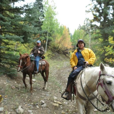 D bar G Outfitters-Horse Back Riding: D bar G Outfitters in Durango