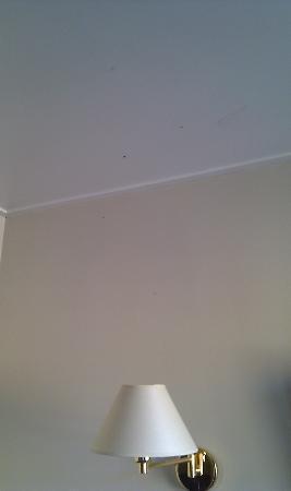 Canalview Hotel Ter Reien: Mosquitos aplastados en el techo 