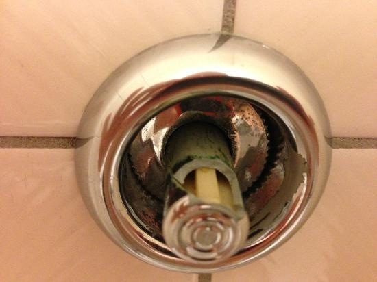 Crowne Plaza Auckland: The toilet flush, urgently needs a repair