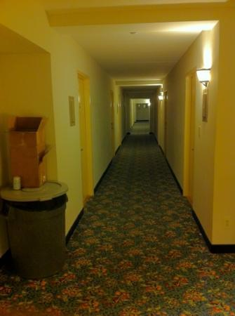 Americana hotel hallway