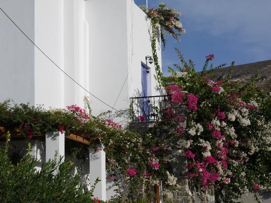 بنسيون صوفيا: Our Balcony 