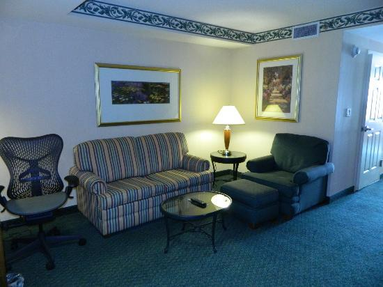 Hilton Garden Inn New York/Staten Island: Living room of the suite