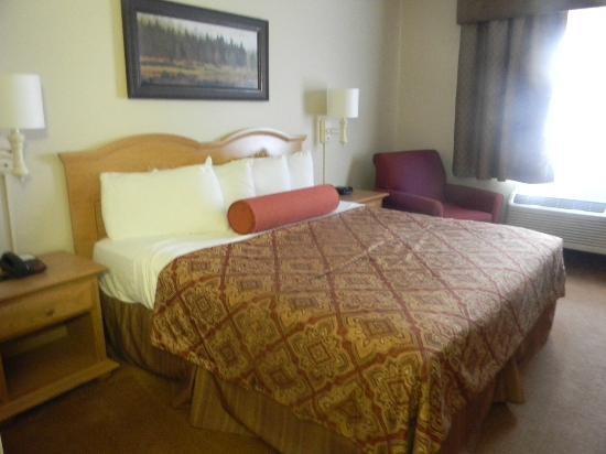 Savanna Inn & Suites: King Room