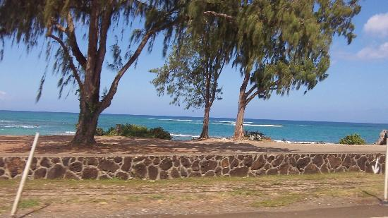 Discover Hawaii Tours: North Shore Beach