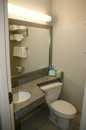 Quality Inn Enola - Harrisburg: Bathroom