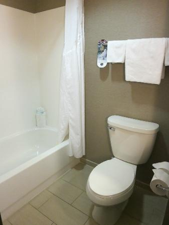 Holiday Inn Express & Suites Dayton South: Bathroom