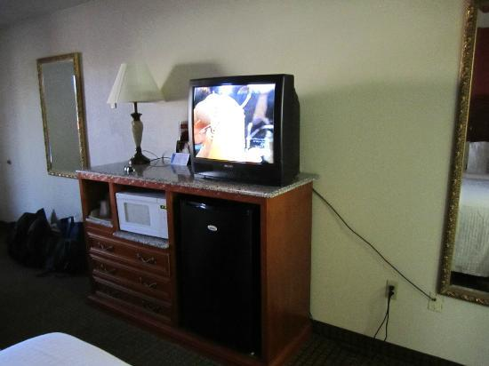 Island Drive Lodge: TV, microwave and fridge