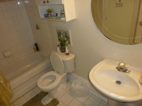 Comfy Guest House and Suite: Baño