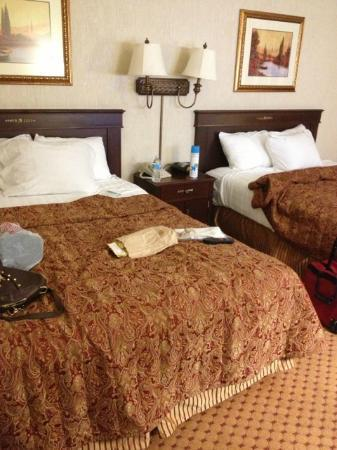 Drury Plaza Hotel St. Louis at the Arch: double queen beds