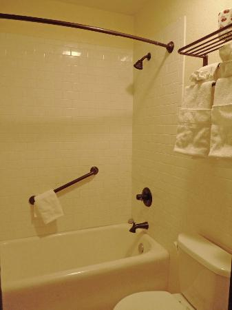 Holland Hotel: One of two bathrooms in our suite