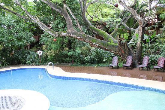Hotel Bosque del Mar Playa Hermosa: Pool