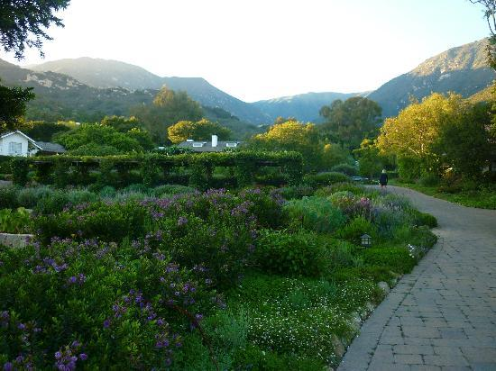 San Ysidro Ranch, a Ty Warner Property: More gardens