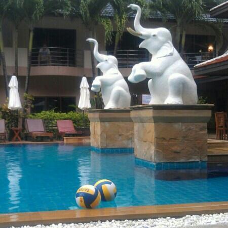 Nipa Resort: Nipa pool