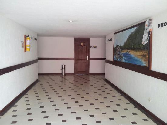 Hotel Arhuaco: 310