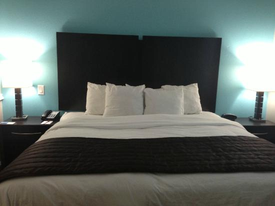 Comfort Suites at Katy Mills: King Bed