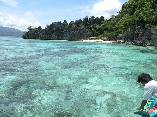 Banana Island: Coron Island, Palawan 