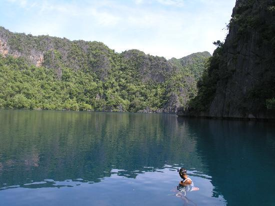 Banana Island: Barracuda Lake, Coron Island, Palawan, Philippines