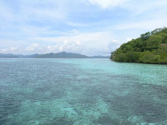 Banana Island: A place towards Malcapiya Island, Coron